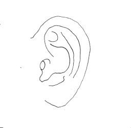 paz oreja copia